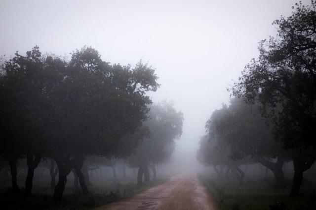 Via de la Plata 0092.jpg